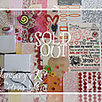 January 2009 Kit-Citrus Love  SOLD OUT