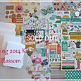 Spring 2014 Kit-Blossom  SOLD OUT